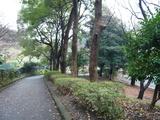 横浜市児童遊園地3
