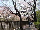 加賀橋付近