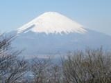 富士見台から富士山