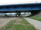 新六郷橋付近の道