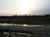 多摩川戻る
