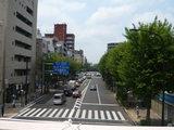 青梅街道(杉並公会堂前)