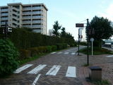 越中島公園(信号?)