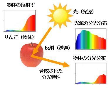 ICS_光_スペクトル_物体色_3_new