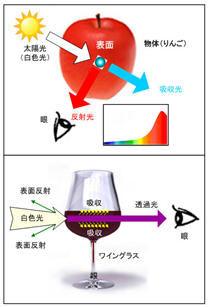 ICS_光_電磁波_物体色_2_new