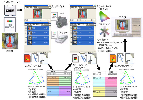 ICS_CMM_計算実行_使用例_new