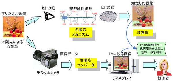 Fig1_2_4_14