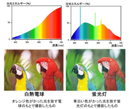 ICS_光_色温度_電球_蛍光灯_1_new