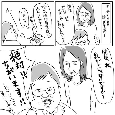 IMG_9006