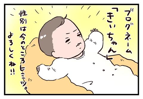 imopuro12_02