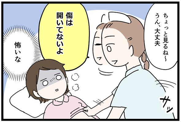 icchomae1244_04