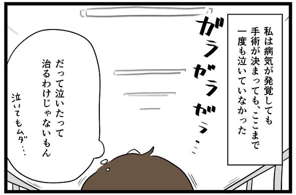 icchomae1240_04
