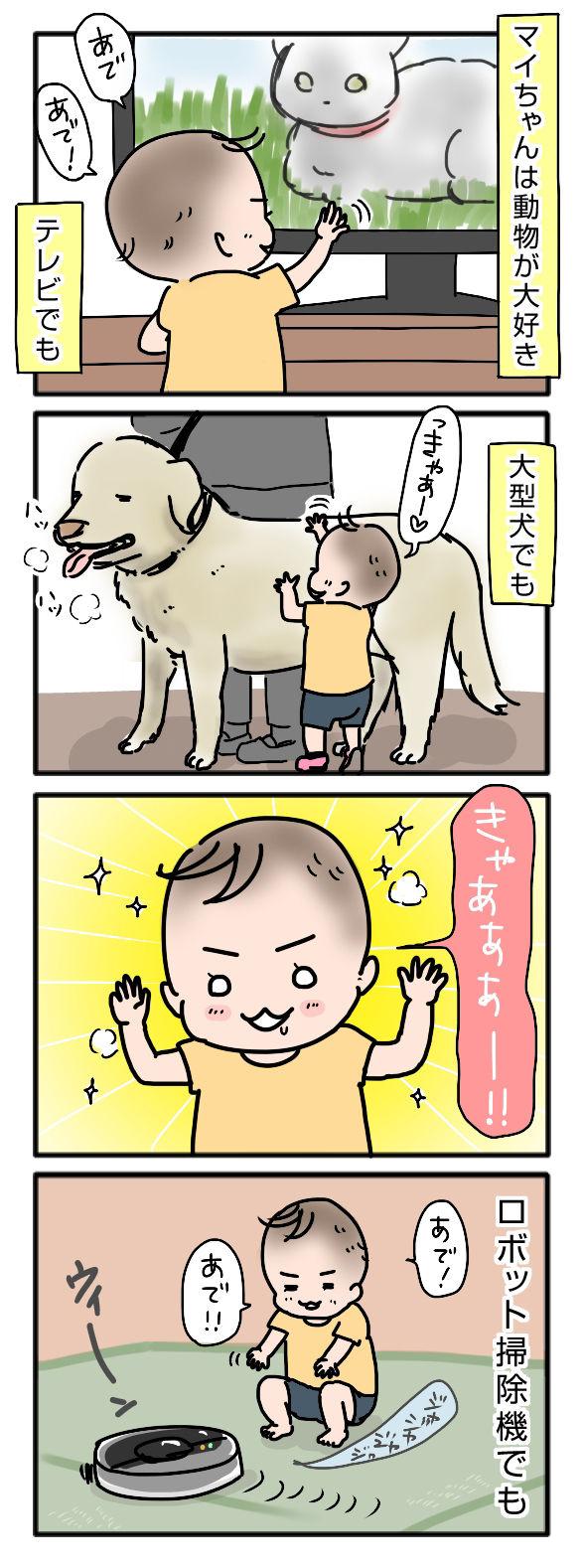 動物が好き