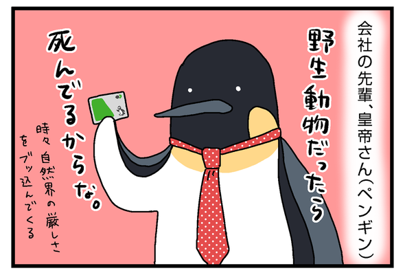 icchomae901_02