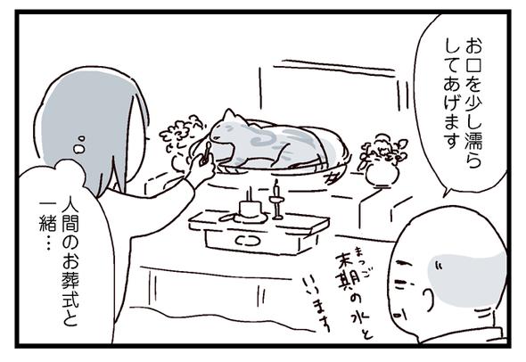 icchomae546_4