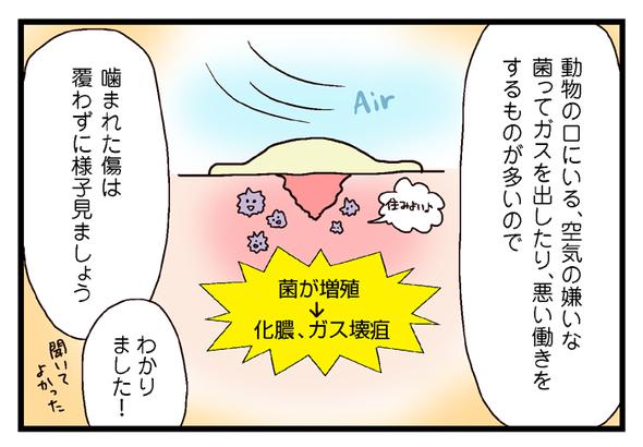 icchomae380_03