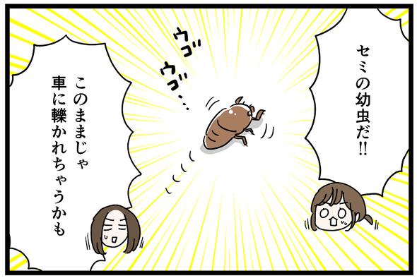 icchomae1270_07