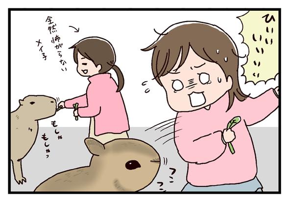 icchomae318_01