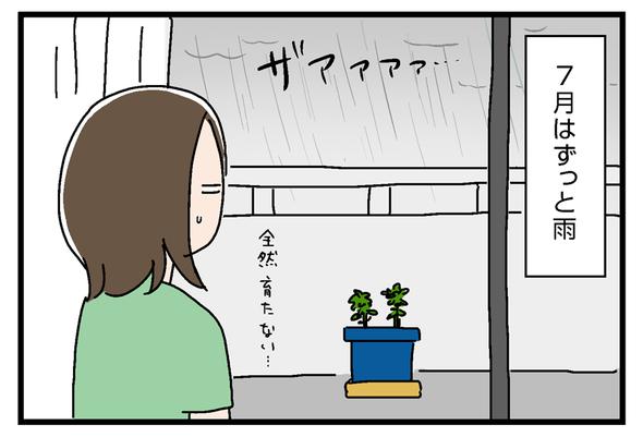 icchomae867_02