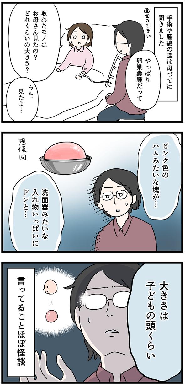icchomae1243_03