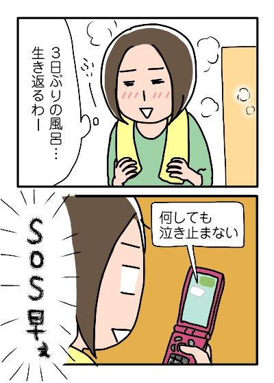 マイちゃん入院7-2
