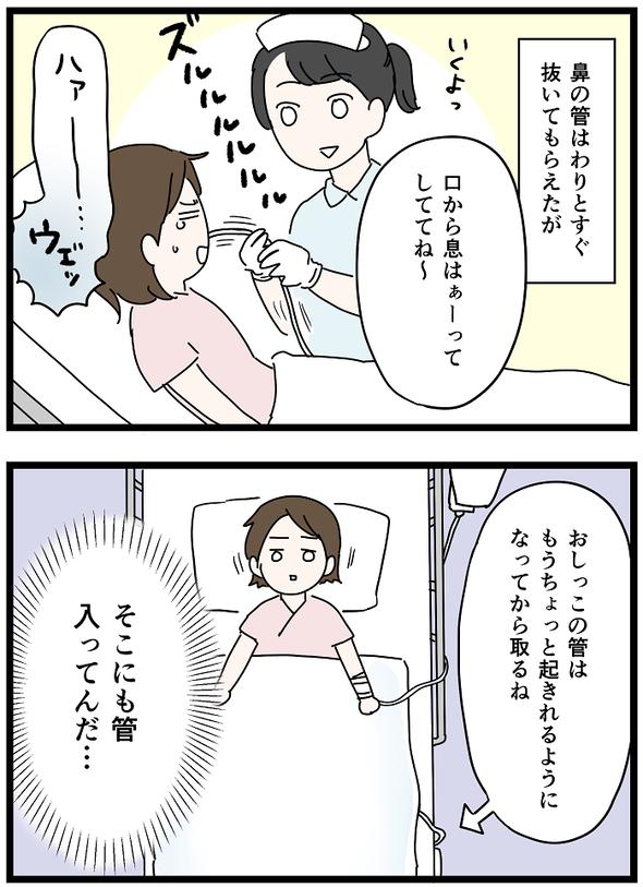 icchomae1242_03