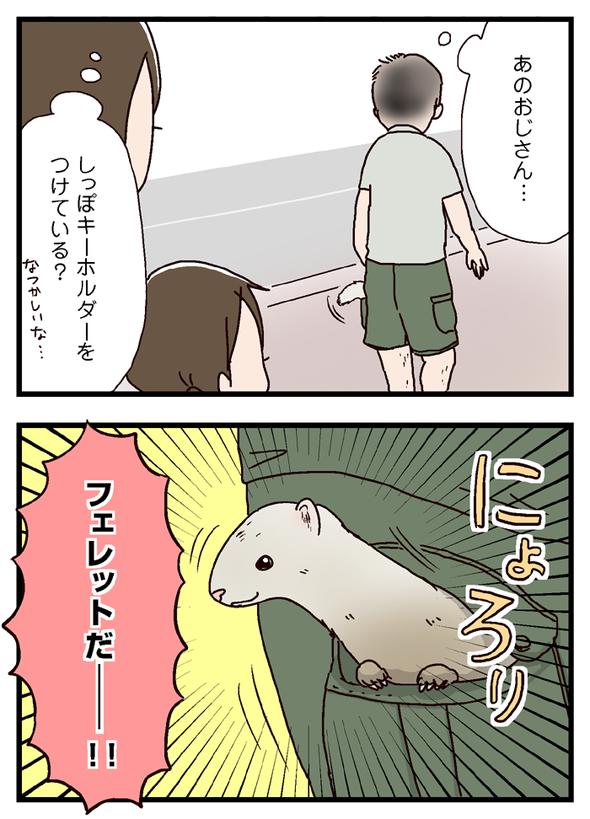 icchomae378_02