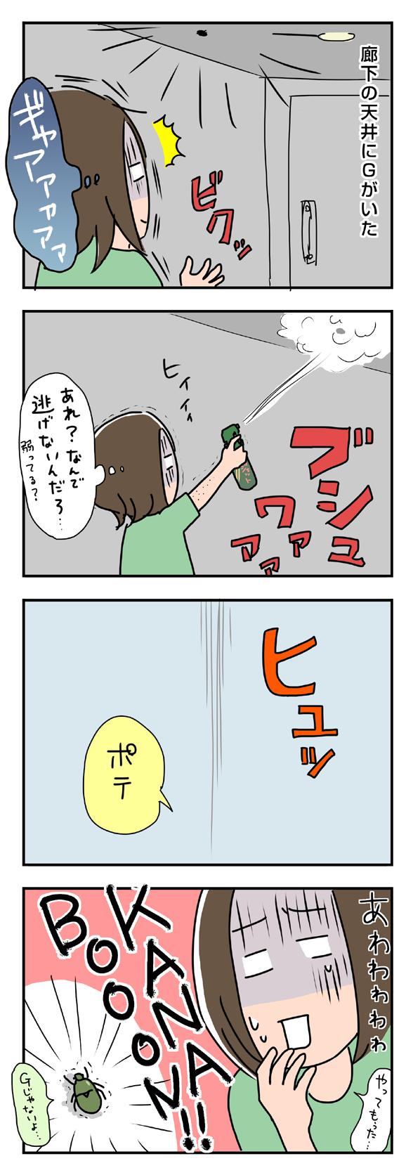 icchomae225