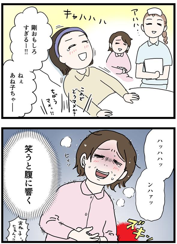 icchomae1244_03