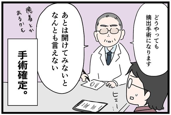icchomae1239_01