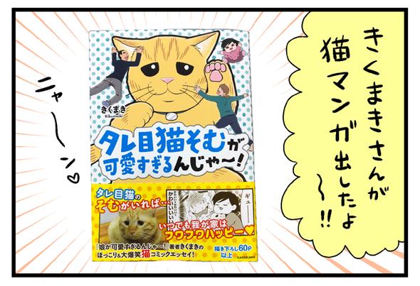 「タレ目猫そむが可愛すぎるんじゃ~!」読みました
