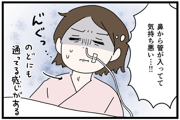 icchomae1242_02