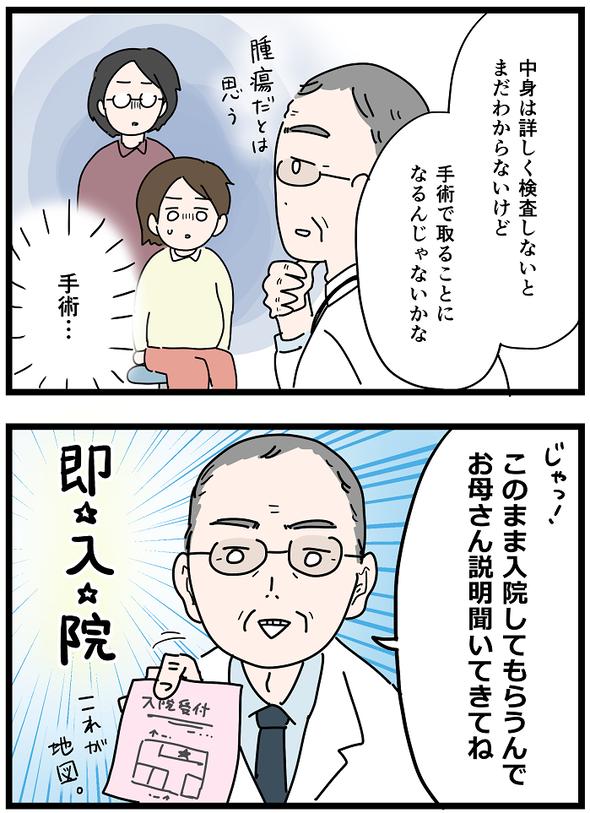 icchomae1237_02