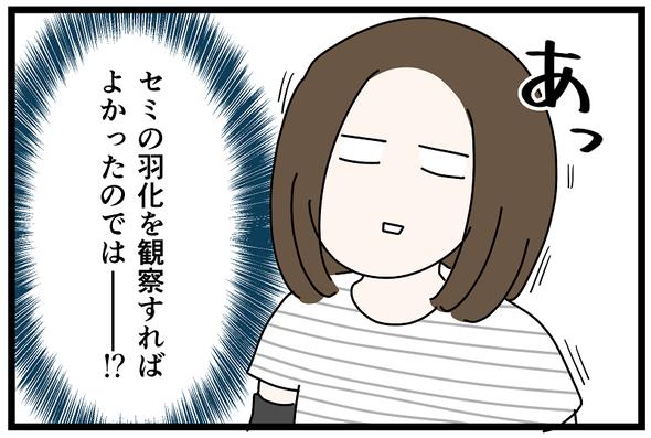 icchomae1270_10