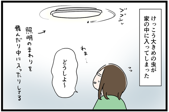 icchomae958_01