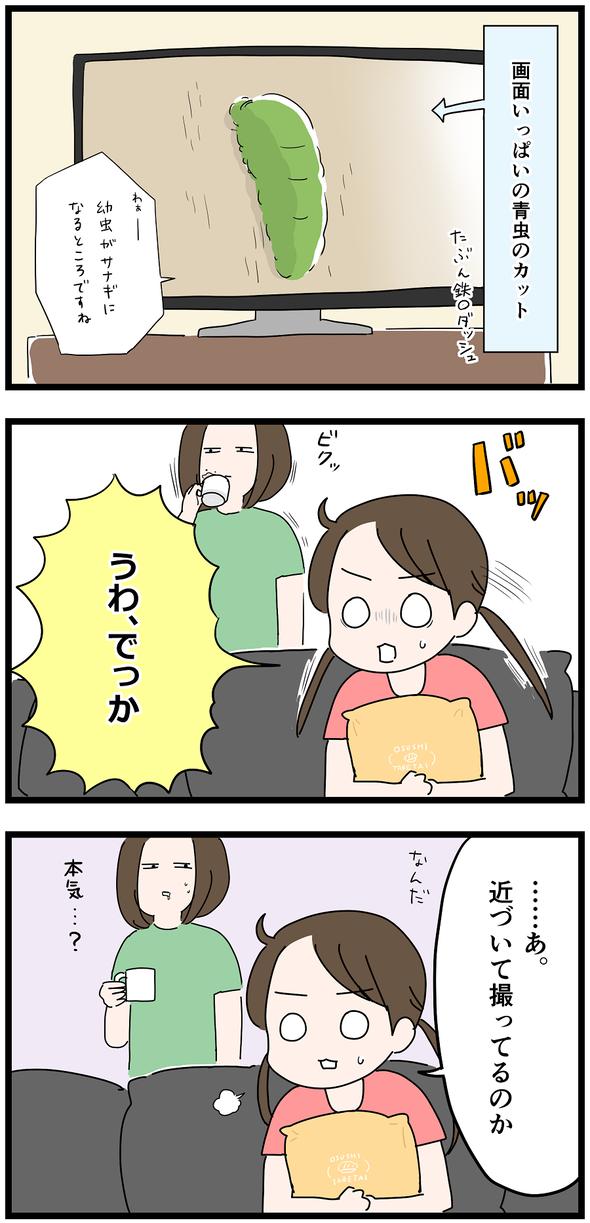 icchomae1066_04