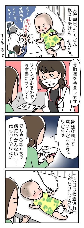 マイちゃん入院その②