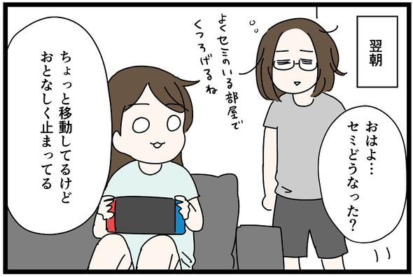 icchomae1272_04
