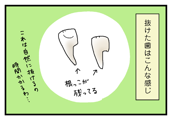 icchomae284_04