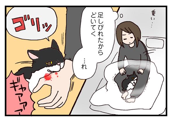 icchomae380_04