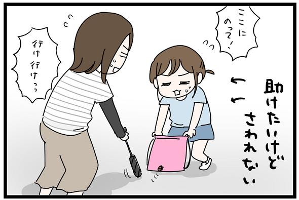 icchomae1270_08