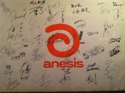 anesis