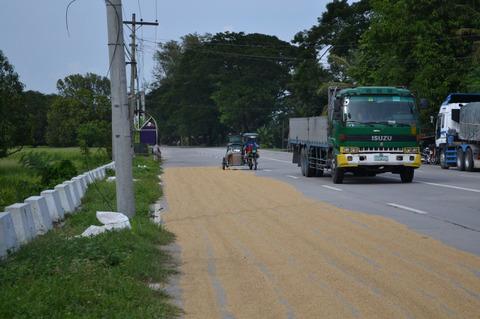 お米の乾燥 (2)