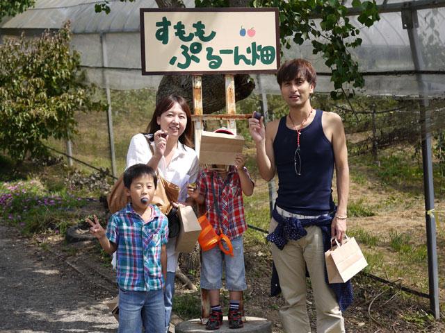 フルーツの森平田観光農園すももプルーン畑