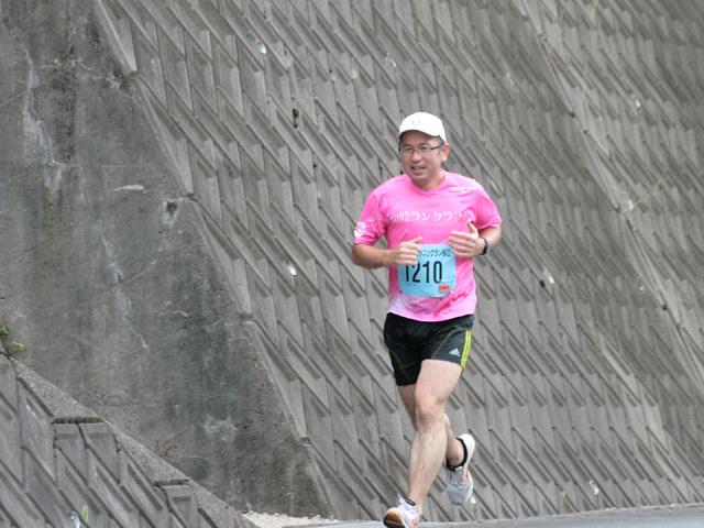 第17回 ピクニックラン桜江 ともごん17km地点