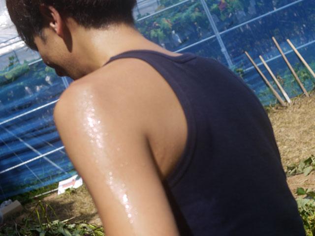 フルーツの森平田観光農園芋掘りで汗だく
