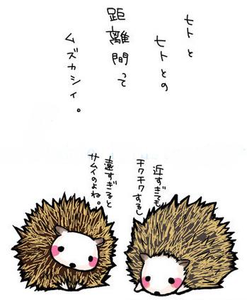 ヤマアラシの画像 p1_23