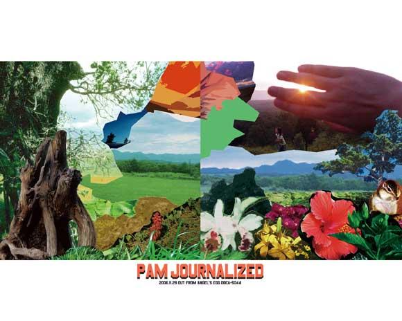 PAM wallpaper