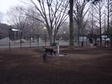 小金井公園ドッグラン