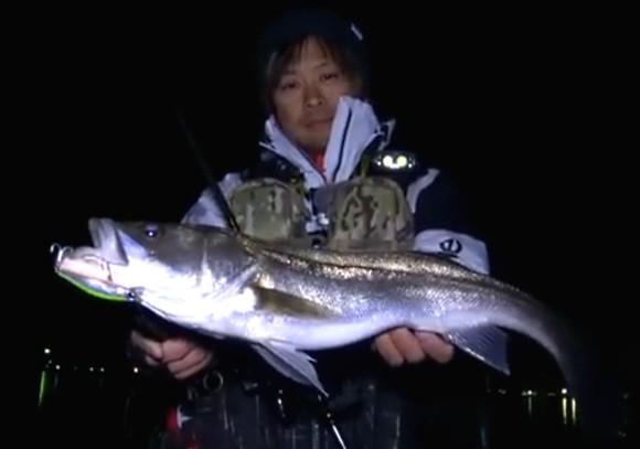 大野ゆうき シーバス 遠征 兵庫 岡山